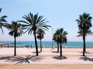 Barcelona Hotels With Pools Near The Beach