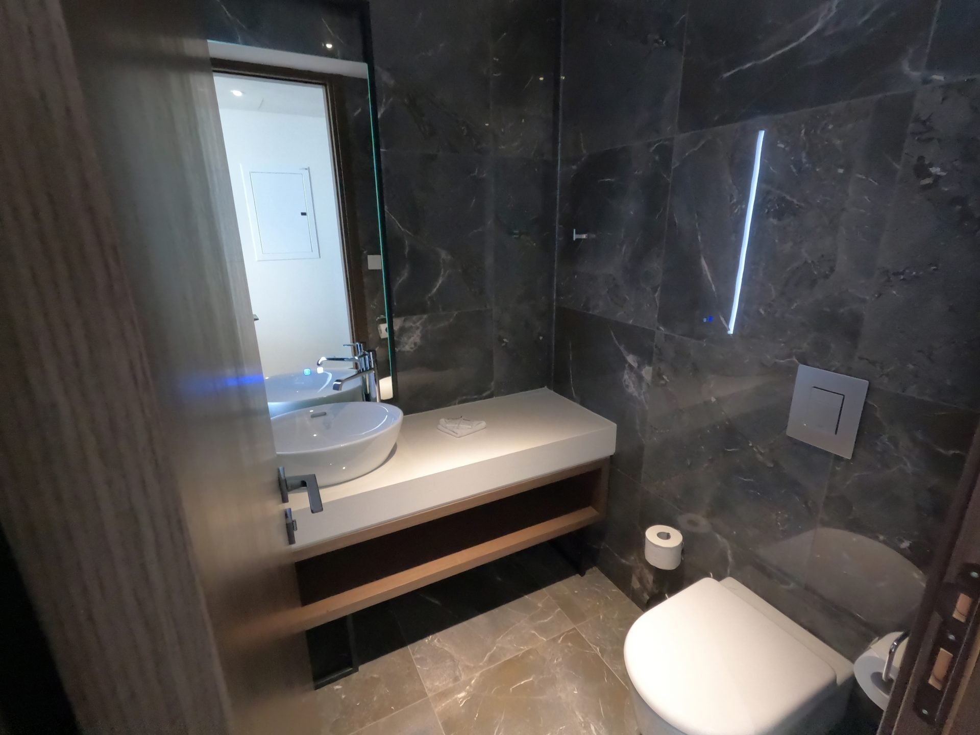 Guest Bathroom next to the living room